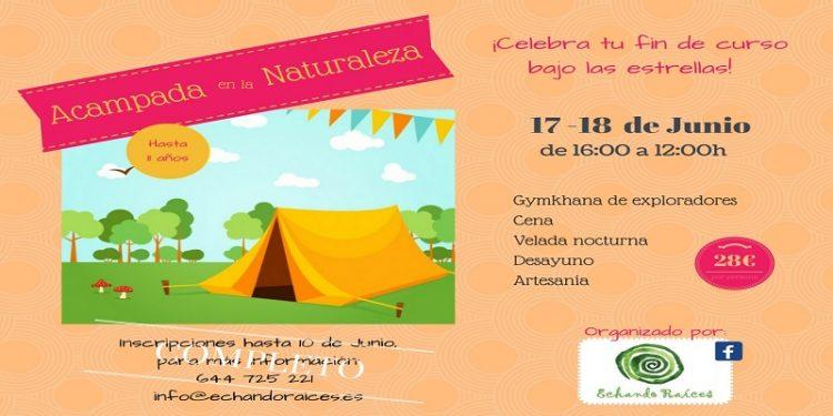 cartel acampada COMPLETO web